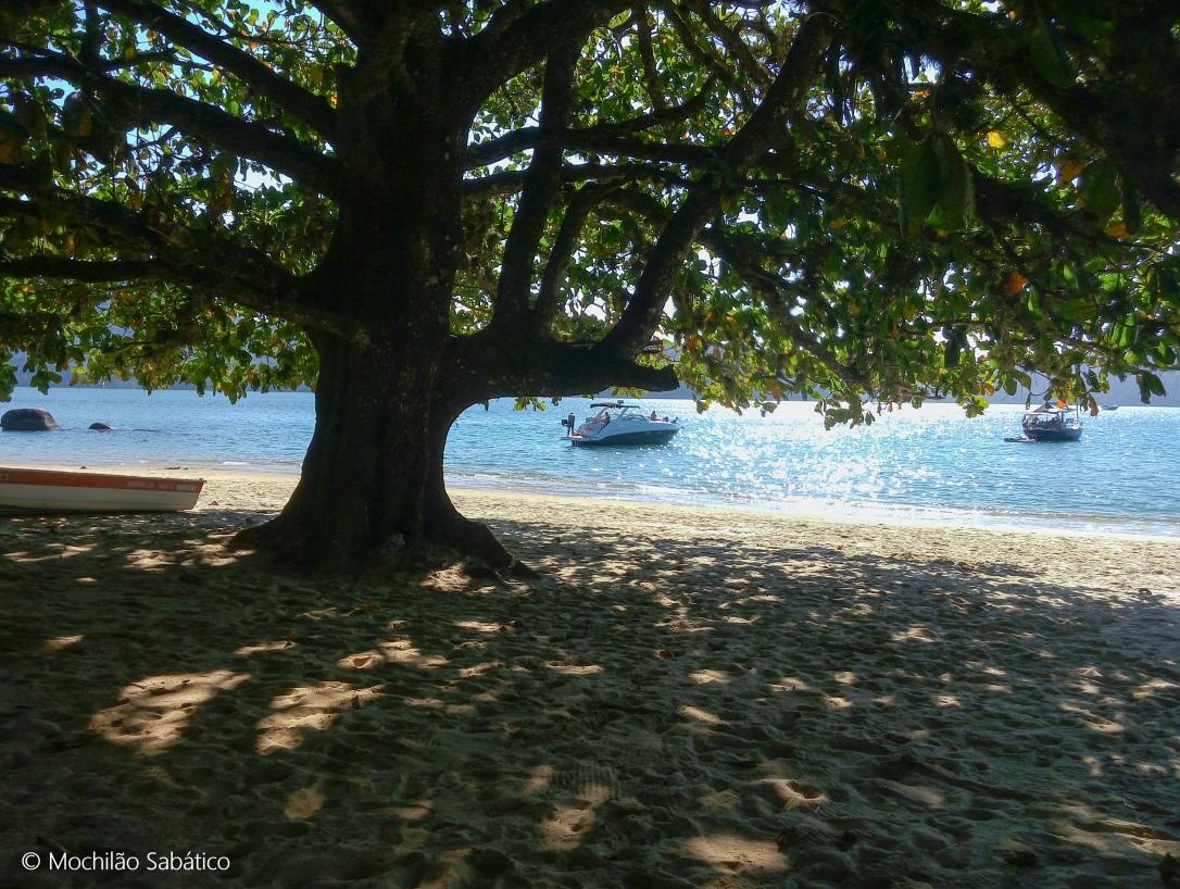 Descansando na praia do Engenho (Reserva Ecológica da Juatinga)