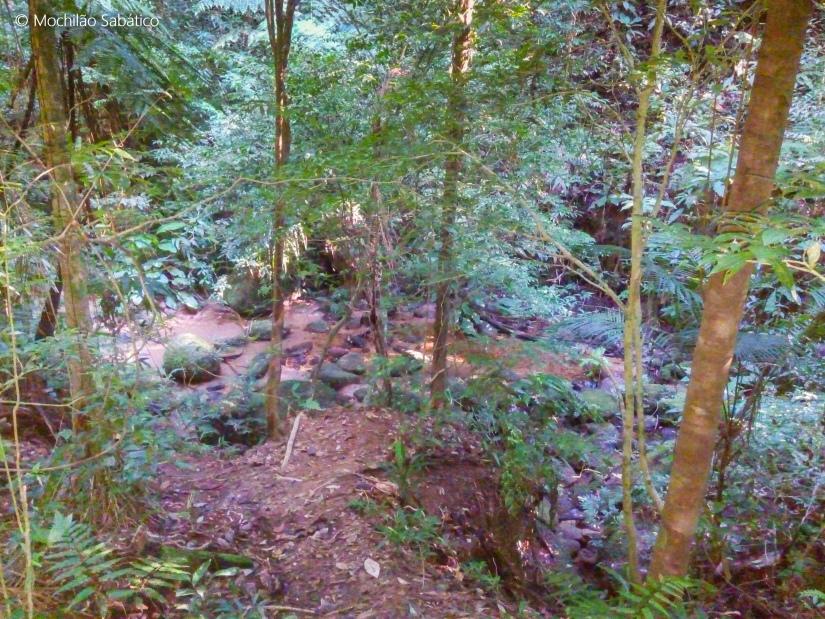 Início da trilha de Cairuçu das Pedras para Ponta negra