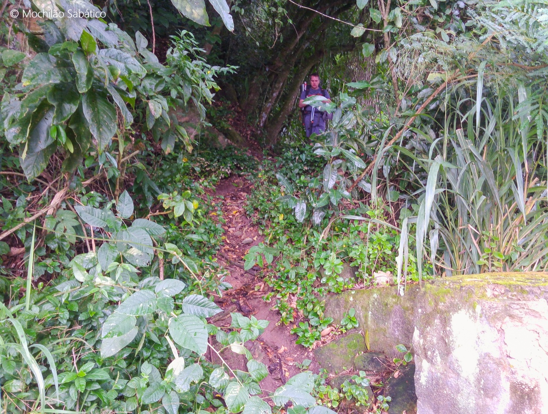 Início trilha Paraty Mirim