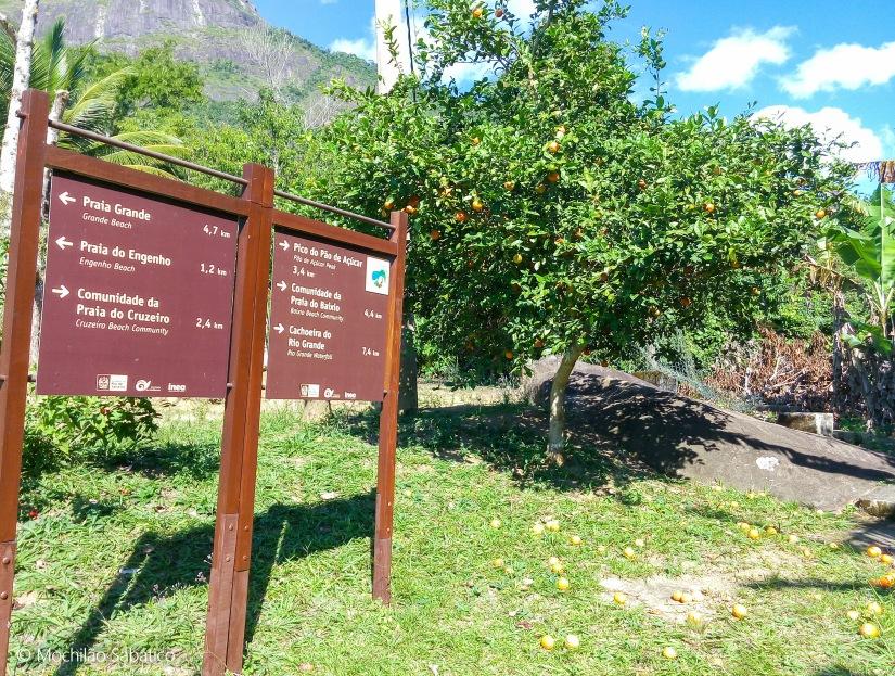 Orientação da trilha na Reserva Ecológica da Juatinga (Paraty)