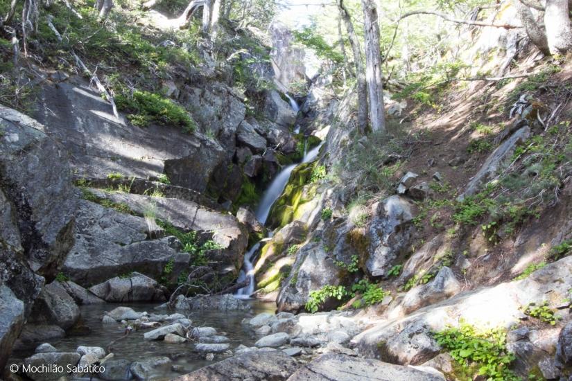 Riacho no Camping (Parque Nacional Nahuel Huapi)