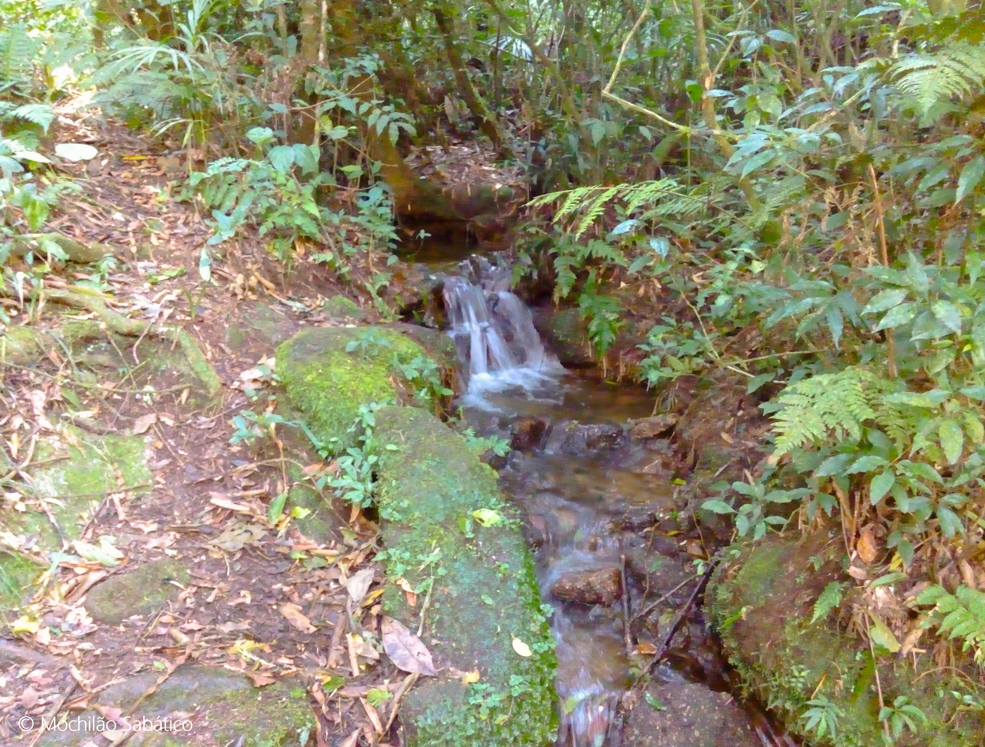 Primeira água da trilha do Jorge, rumo ao Pico da Onça (São Francisco Xavier, SP)
