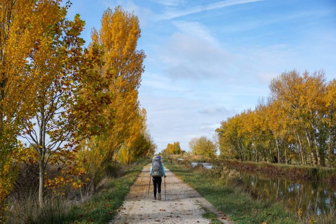 Canal de Castilla.jpg